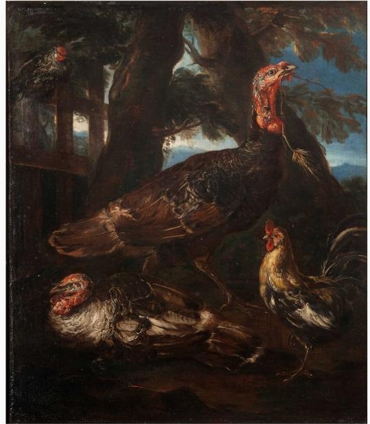 Tacchini e gallo, Crivellone