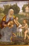 Luini Bernardino - Pittori e scultori