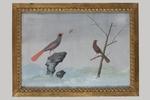 Carlo Antonio Raineri, set di quattro tempere raffiguranti Volatili - Galleria